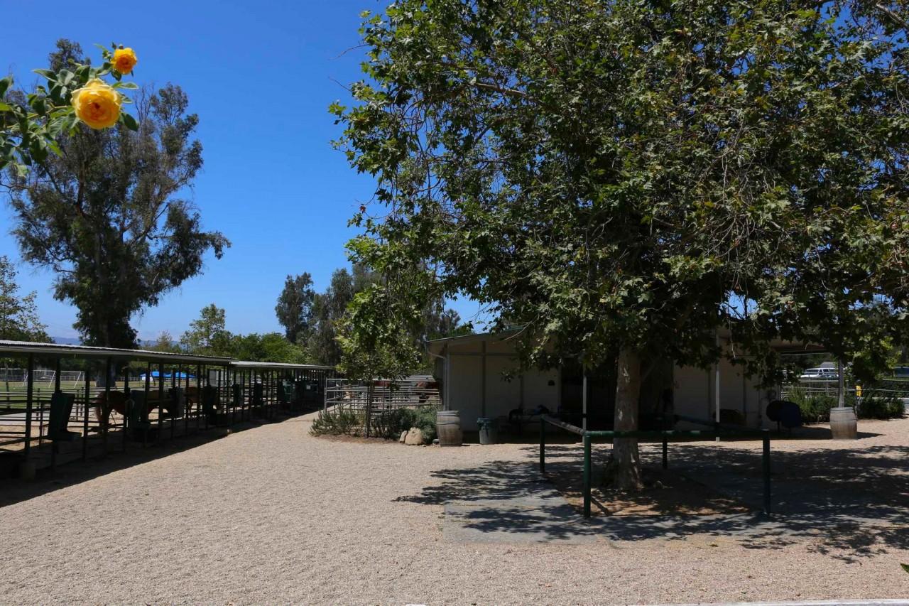 Lower Campus - Equestrian Center