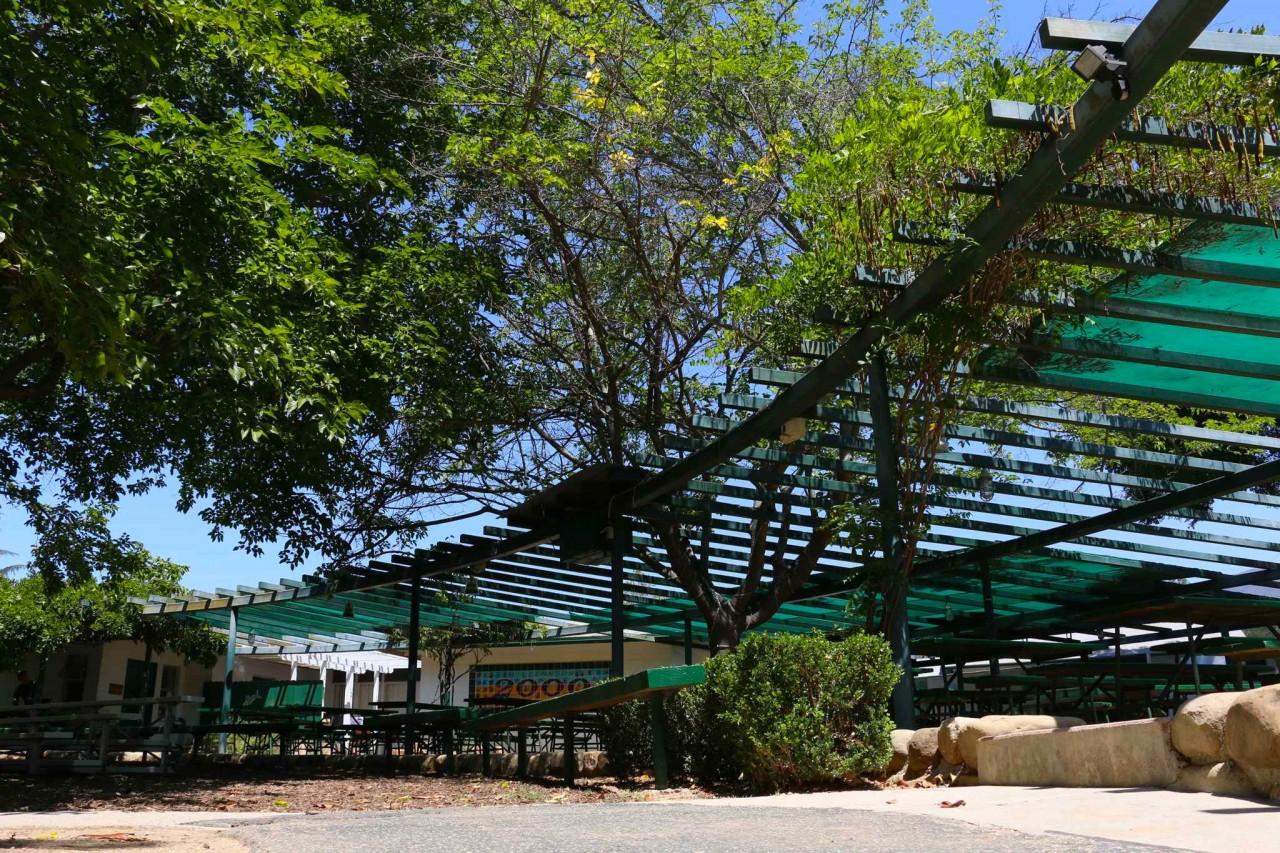 Lower Campus - Burr Pergola