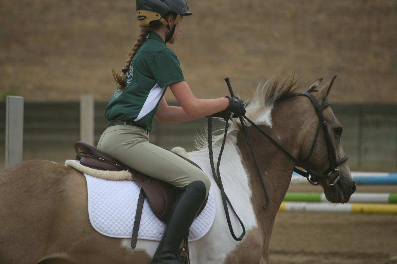 Equestrian Ojai Valley School Private College Prep Day